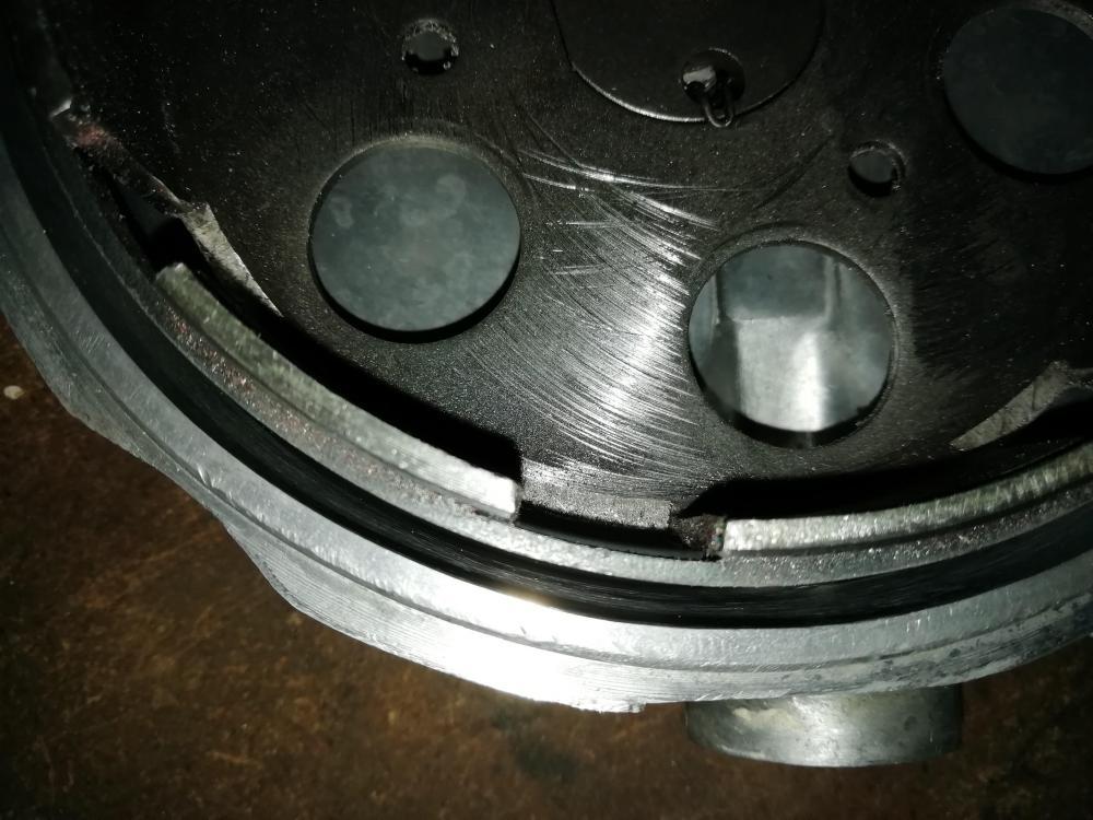 FCA9966A-BEF6-484D-B934-448077F90FAF.thumb.jpeg.f6afe6e4a5f86f1c3289b607cfffd927.jpeg